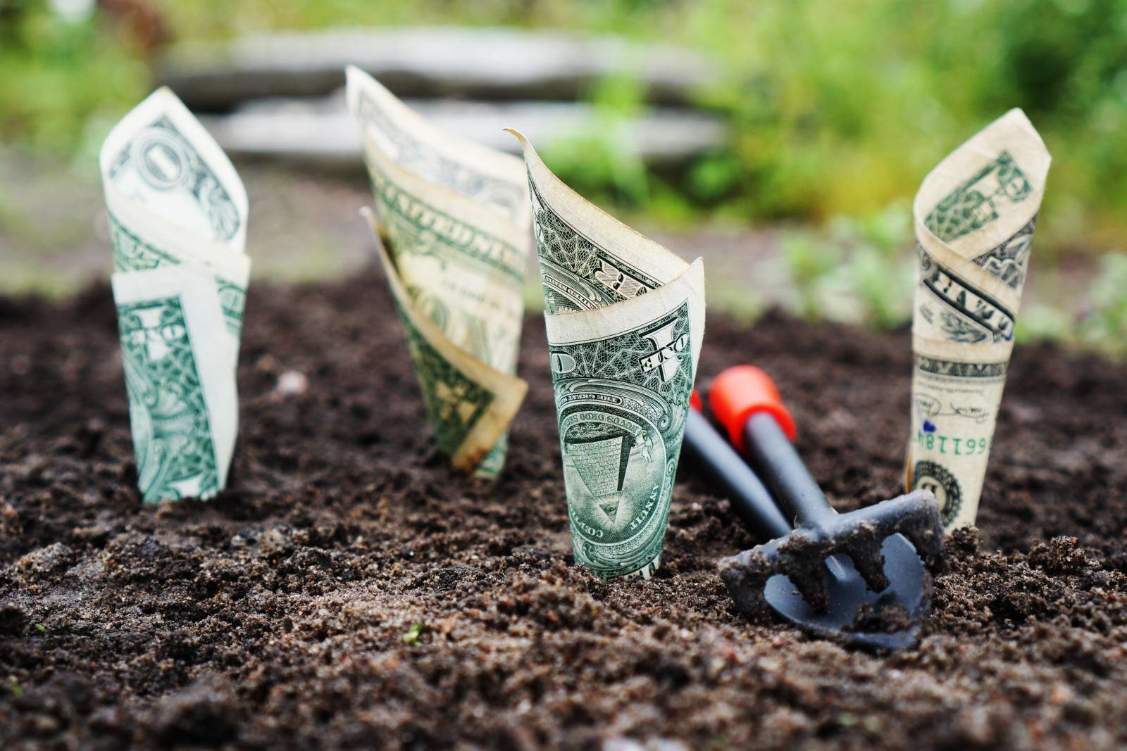 Guest Post: Financial Freedom Tips for Millennials